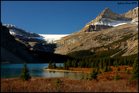 Bow Lake/Lac Bow